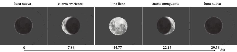 Fases de la luna - ECyT-ar