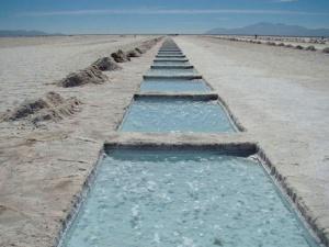 Yacimientos De Litio En Argentina Ecyt Ar